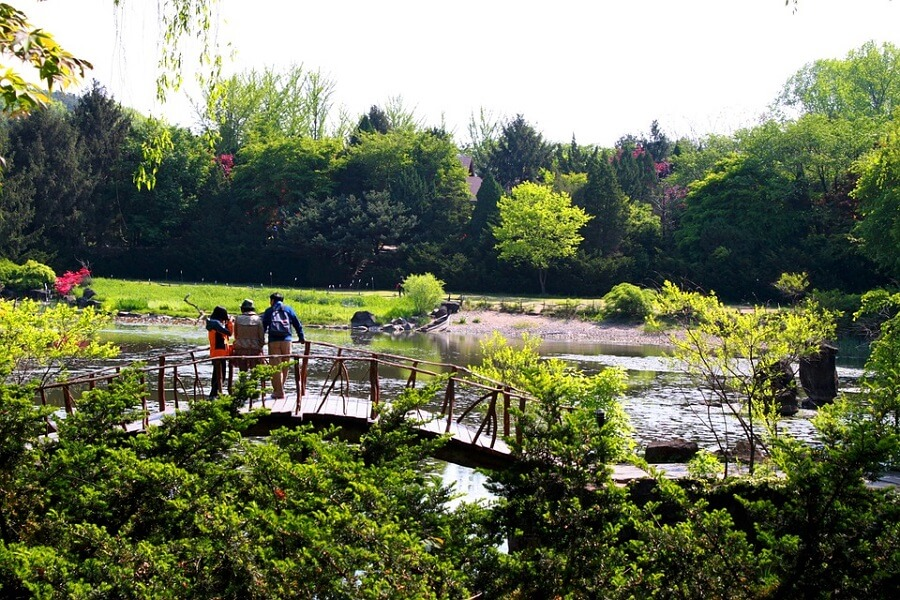 Family looking for luxury travel companies