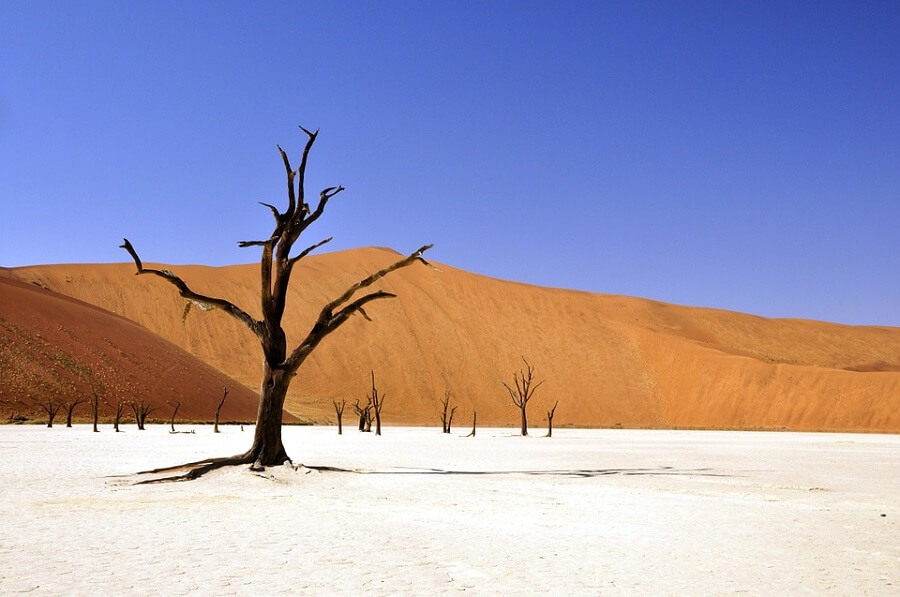 Namibian desert as part of the Epic Tomato luxury travel companies