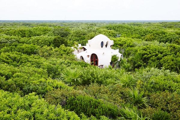 Papaya Playa Project Treehouse