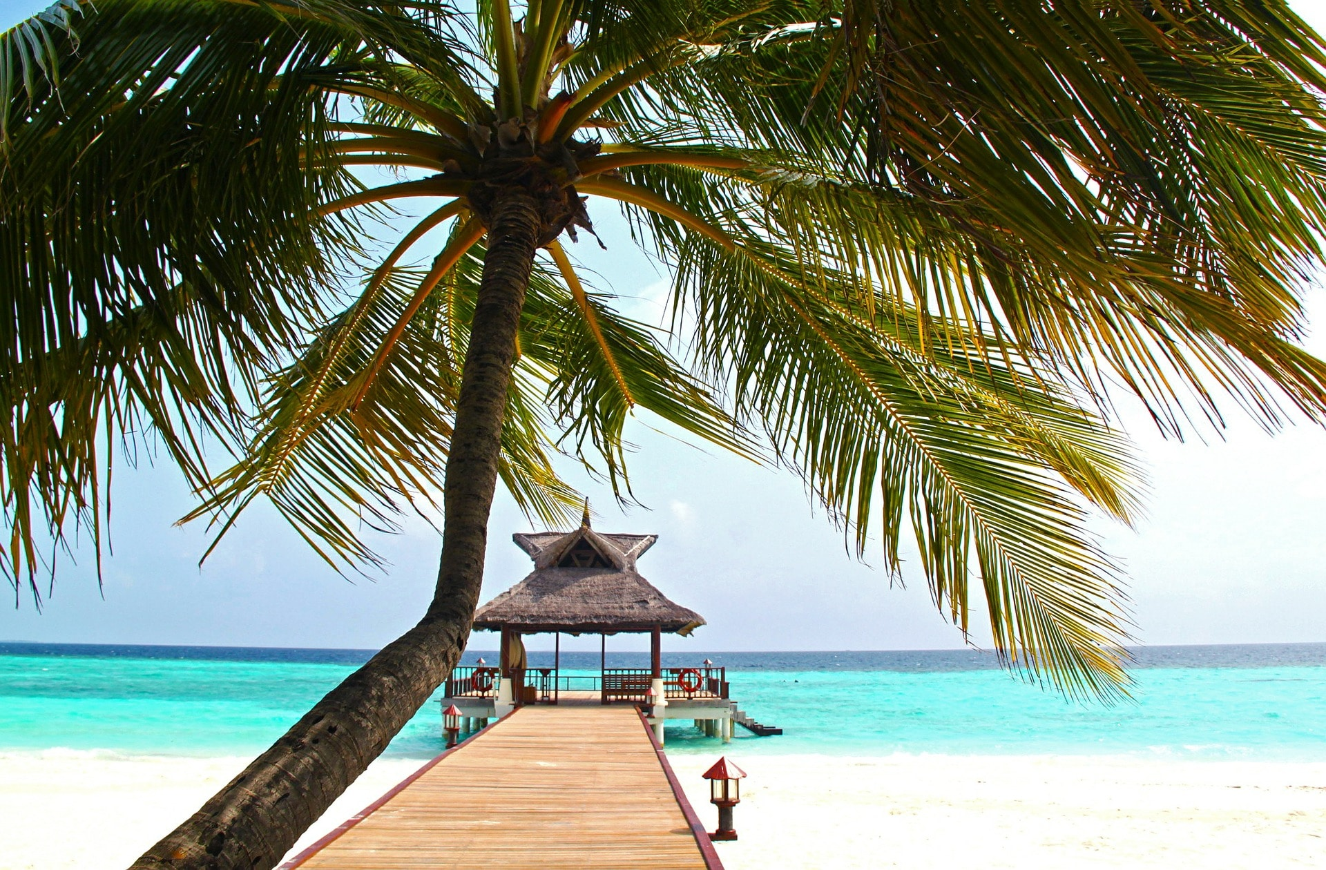 luxury family resorts, kid friendly luxury resorts, luxury family resorts, luxury resorts for kids, best luxury family resorts, best resorts for toddlers, luxury family resorts usa, toddler friendly resorts, best vacations for toddlers, best luxury hotels for kids, luxury family vacation resorts, family resorts usa, best resorts for kids, luxury family camp, luxury resorts family vacations, best luxury resorts, best luxury family resorts caribbean, all inclusive family resorts usa, best caribbean resorts for families, best family resorts in us, best luxury florida resorts for families, luxury colorado family resorts, best luxury all inclusive family resorts, best all inclusive family resorts, luxury family vacations, luxury family resorts caribbean, family friendly luxury resorts, best resorts in the us, best family vacations with toddlers, luxury family vacation ideas, luxury family friendly hotels, best luxury family hotels, luxury family holiday resorts, luxury travel with toddlers, best 5 star all inclusive resorts for families, best luxury resorts in usa, best family beach resorts, best luxury resorts in caribbean for families, 5 star all inclusive resorts for families, top us beach resorts for families, luxury resorts usa, luxury summer family vacation ideas, luxury all inclusive family resorts, best caribbean vacations for families, luxury family resorts united states, 5 star family vacation resorts, luxury family all inclusive, luxury family resorts europe, best family resorts, north carolina family resorts, best family resorts east coast, best family resorts in florida, east coast family resorts, high end resorts, family friendly luxury resorts caribbean, luxury kids, best family resorts in california, kids resorts, best luxury family resorts, family friendly resorts, best family resorts in the world, luxury family vacations, best resorts for kids, best family vacations 2017, best kid friendly resorts, resorts and hotels, best family hotels 2017, kid friendly resorts, luxury resorts family vacations, top family resorts in the world, luxury summer family vacation ideas, family vacation 2017, kid friendly luxury resorts, family friendly luxury resorts, best resorts for toddlers, top family vacations 2017, luxury family resorts usa, best luxury hotels for kids, luxury family vacation resorts, luxury family escapes, luxury vacations with kids, amazing hotels for kids, high end family resorts, best luxury family vacations, hotels for families, luxury family all inclusive, top luxury family resorts, top luxury family vacations, exclusive family resorts, luxury resorts for kids, best kids resorts in the world, amazing family resorts, colorado family resorts, best rooms in the world for kids, luxury family friendly hotels, luxury colorado family resorts, best family vacations in united states 2017, family friendly spa hotels, 5 star family vacation resorts, best resorts for children, travel leisure family club review, east coast family resorts, top family vacation destinations 2017, luxury family resorts colorado, summer vacations for families 2017, best resorts for teens, savannah resorts for families, top us family vacations 2017, ultimate family vacation, top rated family vacations 2017, child friendly spa hotels, best family hotels in the world, family fun resorts, best vacation programs, best family hotels in colorado, great hotels for kids, luxury family resorts, best luxury family resorts, luxury family vacation resorts, luxury family vacations, luxury family resorts florida, luxury family resorts usa, luxury family resorts caribbean, luxury family beach resorts florida, luxury resorts for kids, luxury family vacations florida, south florida family resorts, luxury all inclusive family resorts, luxury family all inclusive, best family beach vacations, best luxury beach resorts in usa, luxury family beach resorts, luxury family beach vacations, luxe family vacations, all inclusive resorts in florida, best family beach vacations in the world, best luxury all inclusive family resorts, best family beach resorts, all inclusive family resorts in florida, best luxury family resorts caribbean, family beach vacations, five star all inclusive family resorts, best beach resorts in usa, best family resorts in california, luxury family vacation ideas, luxury beach resorts, luxury resorts family vacations, luxury beach vacations, 5 star all inclusive resorts for families, family resorts in california, luxury summer family vacation ideas, luxury family resorts united states, high end family resorts caribbean, luxury vacations with kids, all inclusive family beach resorts in florida, best family resorts gulf coast florida, best 5 star all inclusive resorts for families, high end family resorts, best luxury family vacations, all inclusive kid friendly resorts in florida, all inclusive beach resorts in florida, 5 star family vacation resorts, top luxury family resorts, family friendly luxury resorts, top luxury family vacations, 5 star family resorts, best family resorts on the gulf coast of florida, family resorts in southern california, best family resorts in us, family resort, family resorts usa, top family resorts in us, best family resorts, best resorts for kids, luxury family resorts usa, best kid resorts in us, family vacation resorts in usa, family vacation resorts, luxury family resorts, best family friendly resorts in us, family friendly resorts in united states, best kid friendly resorts, best family friendly resorts, best family vacation resorts, east coast family resorts, best kid friendly resorts in us, luxury family hotels, best family friendly resorts in usa, kid friendly resorts in usa, luxury family vacations, luxury family resorts united states, 5 star family hotels, best family resorts east coast, best family vacation resorts in us, top resorts in us for families, best kid friendly resorts usa, top resorts for families in us, 5 star family vacation resorts, luxury family cottages, 5 star family resorts, family friendly resorts united states, best luxury family resorts, family fun resorts, family friendly resorts, top family resorts, best family holiday resorts, top 10 family resorts, luxury family vacation resorts, kids resorts, kid friendly luxury resorts, best family beach resorts in united states, best hotel pools for families, kid friendly resorts, luxury family holiday resorts, five star family resorts, best family friendly hotels, top ten family resorts in usa, family hotel resorts, best family resorts in america, best all inclusive resorts for families 2016, resorts in the united states for families, 5 star kid friendly resorts, luxury family camp, luxury family friendly hotels, 10 best family resorts, family resort vacation ideas, family friendly spa hotels, best child friendly resorts, great resorts for kids, the best family resorts, luxury resorts for kids, luxury resorts family vacations, best family vacation packages in us, top family friendly resorts, amazing family resorts, family resort ideas, best family hotels in usa, luxury summer family vacation ideas, best resorts for children, top family vacation resorts, luxury family vacation ideas, largest resorts in the us, great american resorts, family spa resort, family spa hotels, luxury hotels with kids clubs, kid friendly resorts east coast, best luxury hotels for kids, hotels with kid pools, family resort packages, family resort hotels, family friendly resorts east coast, best kid friendly hotels, best vacation hotels, family friendly luxury resorts, best family resorts southeast, 5 star child friendly hotels, exclusive family resorts, resorts with kids clubs, kid friendly spa resorts, top ten family resorts, luxury family, rosewood kids, 5 star family resorts, luxury family hotels caribbean, 5 star family vacation resorts, best luxury family resorts caribbean, luxury hotels with kids clubs, luxury family resorts usa, luxury resorts for kids, high end family resorts caribbean, luxury family vacation resorts, best luxury family resorts, luxury family resorts caribbean, luxury family vacations, luxury family resorts, ultra luxury hotels, ultra luxury resorts, ultra all inclusive holidays, luxury resort brand, luxury asian hotel chains, luxury resort companies, luxury hotel brands, luxury hotel chains, global luxury hotel brands, most luxurious hotels in the world, high end hotel chains, luxury hotel brands list, top hotel brands, luxury resort brand, best hotel brands, best hotel chains in the world, most luxurious hotel chains, top 10 luxury hotels in the world, luxury hotel groups list, luxury asian hotel chains, luxury hotel brands in the world, luxury hotel groups, best luxury hotel brands, top 10 luxury hotel brands in the world, 5 star hotel brands, top luxury hotel brands in the world, list of luxury hotels, most luxurous hotel chains in the world, top 10 luxury hotel chains, world no 1 luxury hotel, best hotel chains in the world 2017, top luxury hotel chains in the world, top 5 hotel brands in the world, 5 star hotels in usa, 5 star resorts in usa, 5 star resorts, best resorts in the us, best resorts in usa, us resorts, best hotels in usa, five star resorts, luxury resorts usa, luxury hotels usa, 5 star luxury hotels, five star resorts in usa, top reorts in the us, five star hotels in usa, best luxury hotels in usa, luxury spa hotels, best 5 star hotels in usa, best resorts in america, best luxury beach resorts in usa, 5 star luxury resorts, best luxury resorts in usa, luxury resorts nited states, top hotels in the us, luxury beach resorts usa, exclusive hotels, 5 star spa, 5 star boutique hotels, best boutique hotels in us, most luxurious hotels in the us, luxury resorts east coast, top resorts in usa, top luxury resorts in the us, top luxury hotels in the us, luxury spa resorts usa, list of 5 star hotels in usa, top 10 resorts in the us, resort five star, luxury 5, best resorts in usa 2017, top hotels in usa, 5 star spa hotels, five star luxury resorts, nicest hotels in america, top luxury hotels in america, best resorts in north america, 5 star beach resorts east coast, luxury vacations usa, best resort hotels in us, five star hotels usa, 5 star hotels south coast, 5 star country hotels, spa resorts in usa, best hotels on the east coast, luxury beach resorts east coast, best spas in the united states 2014, top 10 hotels in the us, top 10 best hotels in usa, resorts in usa, best east coast resorts, best boutique hotels, great resorts in the us, best spas in the us, johansens hotels, independent hotels in the us, best luxury spa resorts in usa, nice resorts in usa, nicest hotels in the us, luxury beach resorts united states, most popular hotels in usa, luxury resorts east coast usa, fancy hotels, five star luxury hotel, most expensive hotel in america, luxury hotels in the south east, spa usa, luxury hotels east coast, 5 star deluxe hotels, top resorts in america, new hotel openings 2017, luxury hotel openings 2017, new hotels 2017, best new hotels 2017, new hotels in turkey 2017, new hotels in florida 2017, upcoming hotels in sri lanka 2017, new hotels ibiza 2017, new hotels in malaysia 2017, new bangkok hotel 2017, ultra luxury hotels, ritz carlton openings, newly opened hotels in sri lanka, luxury resort brand, beatiful hotels, new hotels in london 2017