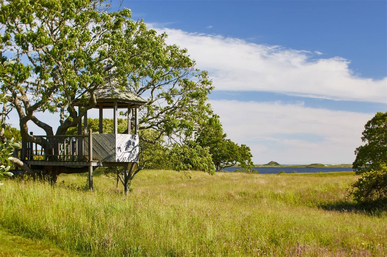 martha's vineyard, jackie kennedy onassis, real estate overview, shoreline, dunes, treehouse