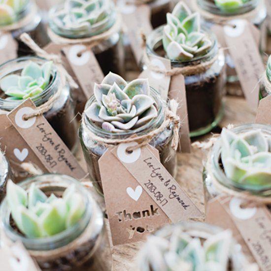 succulents wedding favor