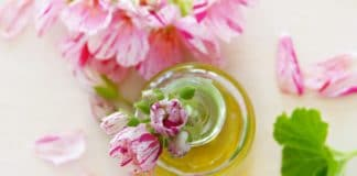 best essential oil scents, essential oils guide, best essential oils, essential oils uses, benefits of essential oils, essential oils for, types of essential oils, what are essential oils, best smelling essential oils, best essential oil combinations, best smelling essential oils for diffuser, essential oil combinations, essential oils that smell good, essential oil smells, essential oils, top essential oils, oil essentials, best essential oils to have, what are essential oils, natural oils, what essential oils are good for, how to use essential oils, list of essential oils, top 10 essential oils, essential oil scents, best aromatherapy oils, best smelling essential oils, most useful essential oils, must have essential oils, essential oils for, aromatherapy oils, aromatherapy essential oils, tea tree oil aromatherapy, list of essential oils, tea tree oil diffuser, lavender aromatherapy benefits, rosemary essential oil uses, types of essential oils, tea tree aromatherapy, tea tree oil aromatherapy benefits, essential oil diffuser benefits, essential oils uses, aroma oil, lemon aromatherapy, eucalyptus essential oil benefits, most popular essential oils, what are essential oils used for, rosemary essential oil benefits, best smelling essential oils, rosemary oil benefits, lavender aromatherapy, eucalyptus aromatherapy, tea tree aromatherapy benefits, lemon oil aromatherapy, eucalyptus oil diffuser, essential oil scents, essential oils and uses, aromatherapy scents, popular essential oils, essential oils meaning, essential oils and their uses, aromatherapy oils uses, tea tree aromatherapy uses, what aromatherapy oils are good for what, aromatherapy oils and benefits, what is lavender oil used for in aromatherapy, essential oil purposes, essential oil smells, best aromatherapy oils, what essential oils are good for, eucalyptus essential oil uses, most popular aromatherapy scents, tea tree essential oil aromatherapy benefits, essential oil aromatherapy benefits, tea tree essential oil diffuser benefits, aromatherapy rosemary mint benefits, benefits of lavender essential oil aromatherapy, essential oil effects, what does each essential oil do, list of essential oils and uses, tea tree oil diffuser benefits, lavender oil aromatherapy, aromatherapy essential oils uses, best essential oils for aromatherapy, essential oil properties, different types of essential oils, aromatherapy oils guide, eucalyptus oil aromatherapy, rosemary aromatherapy benefits, aroma therapy oils, rosemary aromatherapy, aroma oil benefits, essential oil descriptions, essential oils uses list, aromatherapy benefits, essential oils that smell good, lavender aroma benefits, aromatherapy herbs and their uses, eucalyptus aromatherapy benefits, common essential oils, most popular essential oils and their uses, most used essential oils, herbal scents aromatherapy, types of aromatherapy oils, essential oils and aromatherapy, aromatherapy scents uses, different essential oil uses, best essential oil scents, tea tree oil calming, diffusing tea tree oil, aroma essential oil, aromatherapy uses, which essential oils do what, eucalyptus scent, peppermint aromatherapy, essential oils and what they do, essential oils and their benefits, tea tree essential oil benefits, aromatherapy smells, therapeutic oil uses, essential oils uses guide, lemon essential oil diffuser benefits, which essential oil, list of essential oils and their uses, oil diffuser benefits, lavender oil aromatherapy benefits, aromatherapy scents list, eucalyptus oil aromatherapy benefits, how many essential oils are there, aromatherapy oils list, what are the best essential oils for aromatherapy, jasmine aromatherapy, aromatherapy guide, different essential oils, lavender scent benefits, rose aromatherapy, aromatherapy meaning, examples of essential oils, essential oil benefits list, what does rosemary essential oil do, what are the different essential oils used for, essential oils and their purpose, peppermint oil aromatherapy, essential oils list and benefits, chamomile aromatherapy, different essential oils used in aromatherapy, benefits of diffusing tea tree oil, rosemary oil uses, kinds of essential oils, how to use aromatherapy oils, eucalyptus scent benefits, tea tree oil benefits in diffuser, what to do with aromatherapy oils, best smelling essential oils for skin, what is tea tree oil good for in diffuser, favorite essential oils, scents and their meanings, peppermint oil aromatherapy benefits, essential oils and benefits, sandalwood aromatherapy, what do essential oils do, what each essential oil does, bergamot aromatherapy, aromatherapy essential oils guide, list of all essential oils, eucalyptus essential oil diffuser benefits, aromatherapy lemon oil benefits, herbs and aromatherapy, aroma oil uses, essential oil types and uses, lavender eucalyptus oil, aromatherapy scents and uses, aromatherapy list, bergamot scent benefits, aromatherapy what scents do what, rosemary essential oil diffuser benefits, plants used in aromatherapy, best essential oils and their benefits, what kind of essential oils are there, lavender essential oil benefits in diffuser, eucalyptus essential oil diffuser, mint oil aromatherapy, what are each essential oil used for, eucalyptus oil diffuser benefits, eucalyptus mint aromatherapy, aromatherapy herbs, mint aromatherapy benefits, lemon oil diffuser, favourite essential oils, therapeutic essential oils uses, rosemary essential oil aromatherapy benefits, peppermint aromatherapy benefits, lavender fragrance benefits, essential oils benefits guide, essential oil scents and what they do, beneficial essential oils, eucalyptus oil benefits, what is eucalyptus essential oil good for, rose aromatherapy benefits, rosemary scent benefits, aroma effects, oils and their uses, essential oils effects and uses, tea tree oil essential oil diffuser, nice smelling essential oils, cedarwood aromatherapy benefits, what each essential oil is good for, can you diffuse tea tree oil, lavender essential oil benefits diffuser, essential oil vaporizer benefits, tea rose oil benefits, rosemary essential oil diffuser, essential oils and their properties, rosemary oil aromatherapy benefits, lime essential oil aromatherapy benefits, natural scents aromatherapy, what is the best smelling essential oil, what is rosemary oil good for in a diffuser, healing properties of essential oils, what is each essential oil used for, cedar aromatherapy, what types of essential oils are there, therapeutic aromatherapy, list of essential oils and what they are used for, what is rosemary essential oil good for, what essential oil is good for, what is eucalyptus oil good for, most popular essential oil scents, most popular essential oils for aromatherapy, essential oils for smelling good, oils and their properties, list of what essential oils are good for, lavender aromatherapy products, essential oils explained, best smelling essential oil blends, tea tree eucalyptus and lavender essential oil, lavender fragrance oil benefits, natural oils and their uses, types of essential oils and what they do, list of essential oils and their benefits, essential oil vaporizer, what does eucalyptus essential oil do, aromatherapy fragrances, aroma products list, what are the benefits of eucalyptus essential oil, cedarwood oil aromatherapy benefits, essential oils and their benefits to beauty therapy, how do you use essential oils for aromatherapy, lemon essential oil aromatherapy, 10 most popular essential oils, herbal oils and their uses, best aromatherapy scents, essential oil name list, essential oil therapy, sense aromatherapy essential oil, best herbs for aromatherapy, tea tree and eucalyptus essential oils, aromatherapy tea, aromatherapy diffuser benefits, rosemary oil uses and benefits, guide to aromatherapy oils, peppermint scent benefits, most popular essential oil blends, essential oils and healing properties, what does aromatherapy treat, mint and rosemary aromatherapy, humidifier oil scents, therapeutic oil meaning, what are the different essential oils for, aromatherapy plants, benefits of eucalyptus oil in diffuser, can you use tea tree oil in a diffuser, what do all the essential oils do, healing aromatherapy scents, aroma lavender oil, aromatherapy description, essential oil diffuser definition, rose oil uses, different kinds of essential oils, cedarwood and tea tree essential oil, peppermint essential oil diffuser benefits, eucalyptus oil stress relief, what is eucalyptus essential oil used for, peppermint oil diffuser benefits, mint aromatherapy, how to do aromatherapy with essential oils, cedar oil aromatherapy, cedar oil uses, best essential oils and their uses, pre blended oils and their benefits, most common essential oils, aromatherapy guide to oils, aromatherapy essential oils list, bergamot aromatherapy benefits, most useful essential oils, jasmine essential oils and aromatherapy, jasmine essential oil benefits, list of essential oils and what they do, rosemary mint oil benefits, aroma scents, essential oils benefits diffuser, relaxing scents aromatherapy, rose aroma, essential oil names, strong smelling essential oils, aromatherapy oils and their benefits, types of essential oils for diffusers, tea tree essential oil uses, lavender essential oil aromatherapy, common essential oils and their uses, best smelling essential oils for diffuser, which aromatherapy oils do what, aroma oil massage benefits, aromatherapy oils and uses, aromatic oils list, purpose of aromatherapy, essential oils vaporizer, what does aromatherapy do, aroma oils and their uses, most commonly used essential oils, what are aromatherapy oils, essential oil diffuser guide, benefits of aromatherapy oils, bad smelling essential oils, sweet scents essential oils, best smelling essential oils for house, essential oils for smelling good, sweet smelling essential oils, strong essential oils, best smelling essential oils for home, nice smelling essential oils, strong scented essential oils, best essential oil scents, essential oils that smell good, essential oils for odor, best smelling essential oils, strong smelling essential oils, essential oil smells, best smelling essential oils for diffuser, best smelling essential oils for home, best essential oil for home fragrance, best smelling essential oil blends, best smelling essential oils for skin, essential oils that smell good, most popular aromatherapy scents, best smelling essential oil blends, essential oils that smell good, what is the best smelling essential oil,